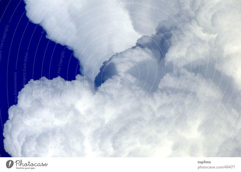 Gewitterwolken Himmel blau Wolken Stimmung Gewitter Gewitterwolken