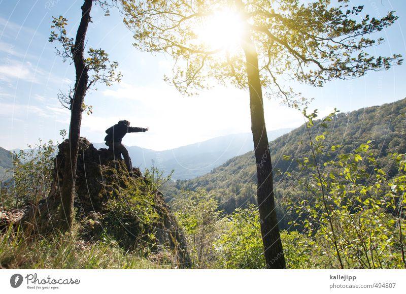 let´s go west Freizeit & Hobby Mensch maskulin Mann Erwachsene 1 30-45 Jahre Umwelt Natur Landschaft Pflanze Tier Luft Himmel Sonne Sonnenlicht Schönes Wetter