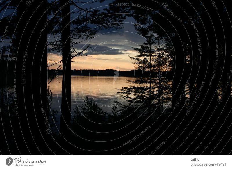 Sonnenuntergang in Schweden ruhig Freiheit Natur Landschaft Wasser Wolken Baum Wald Küste See dunkel Unendlichkeit Romantik reflektion Farbfoto Außenaufnahme
