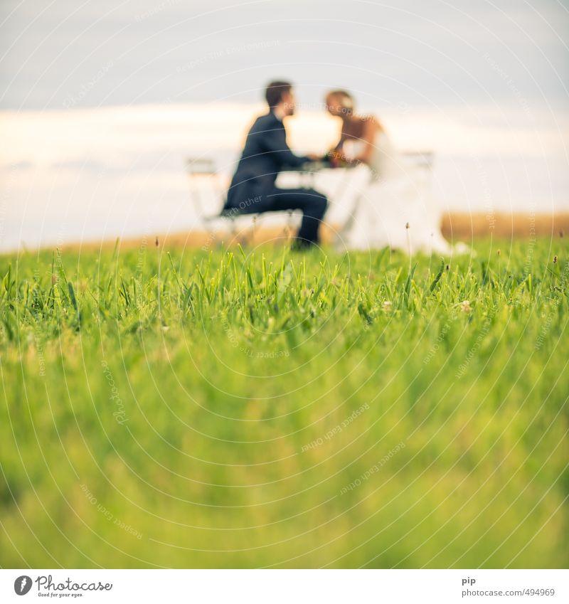 herzrasen Mensch maskulin feminin Junge Frau Jugendliche Junger Mann Paar Partner 2 Landschaft Sommer Schönes Wetter Gras Wiese Brautkleid Anzug sitzen