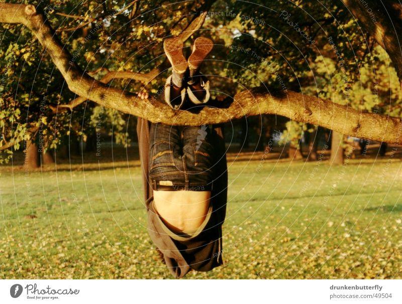 in the hanging garden Mensch Natur Baum grün Blatt gelb Herbst Wiese Gras Wärme Schuhe Rücken Jeanshose Klettern Physik Ast