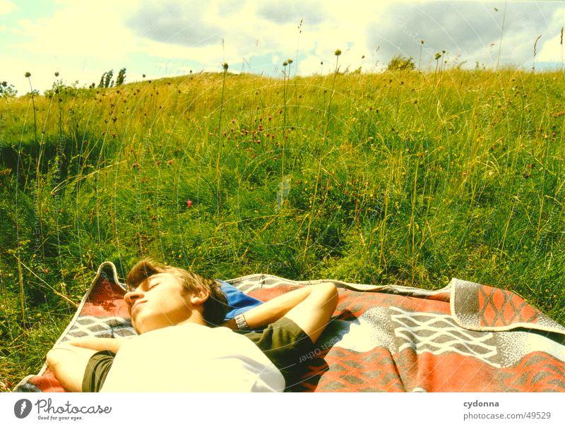 falling over backwards Sonne Sommer ruhig Erholung Wiese Gefühle träumen Landschaft Decke
