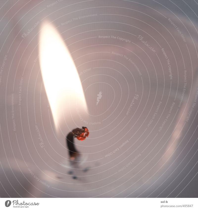 Erholung hell Häusliches Leben leuchten Warmherzigkeit einfach Feuer Vergänglichkeit Hoffnung Romantik Kerze Frieden heiß Glaube nah Duft