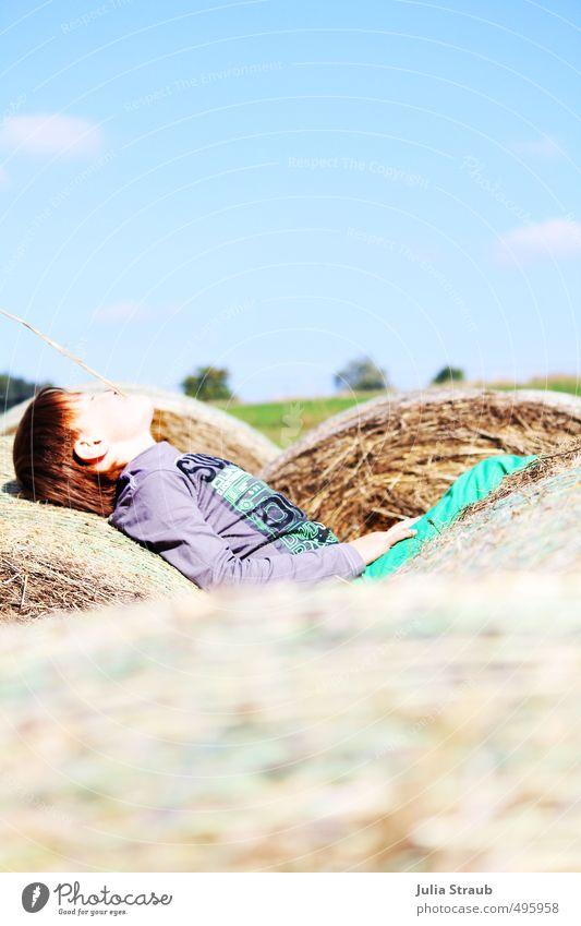 genieße deine kindheit Mensch Kind Himmel blau grün Erholung rot ruhig Herbst Junge grau Glück liegen braun maskulin Feld