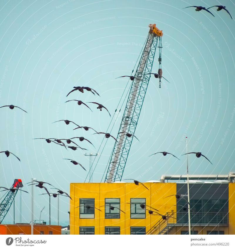 Rømø | hafenrundflug Natur blau rot schwarz gelb Leben Gebäude Vogel fliegen Kraft Zukunft Technik & Technologie Hafen Sehnsucht Wolkenloser Himmel Schifffahrt