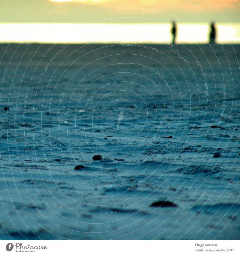 Versöhnung Mensch Frau Jugendliche Mann Ferien & Urlaub & Reisen Sommer Sonne Meer Strand Ferne Erwachsene Freiheit Paar Freundschaft Tourismus Ausflug