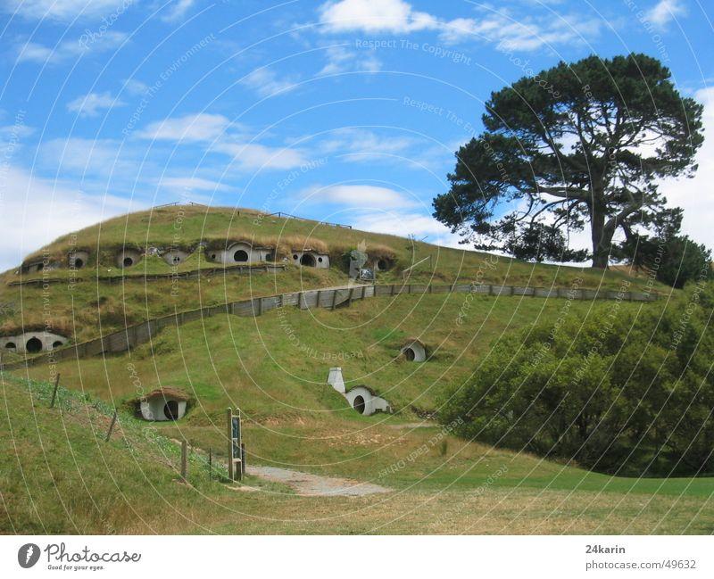 Auenland - die Heimat der Hobbits Neuseeland Der kleine Hobbit Der Herr der Ringe Drehort Filmindustrie Baum Hügel Haus fabel lord of the rings set Landschaft