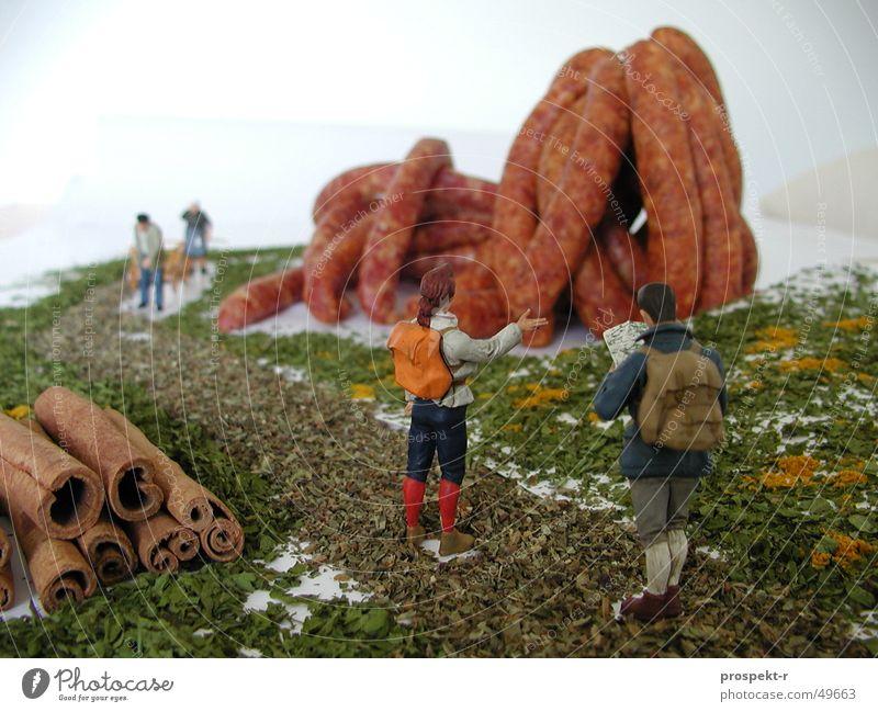 Wurstberg Fleisch Kräuter & Gewürze Landschaft wandern Wurstwaren Miniatur Basilikum Zimt