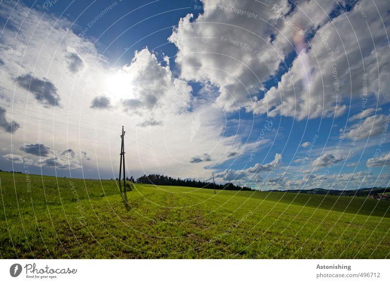 grüner Strom Kabel Umwelt Natur Landschaft Pflanze Luft Himmel Wolken Horizont Sonne Sonnenlicht Sommer Wetter Schönes Wetter Wärme Baum Gras Wiese Feld Wald