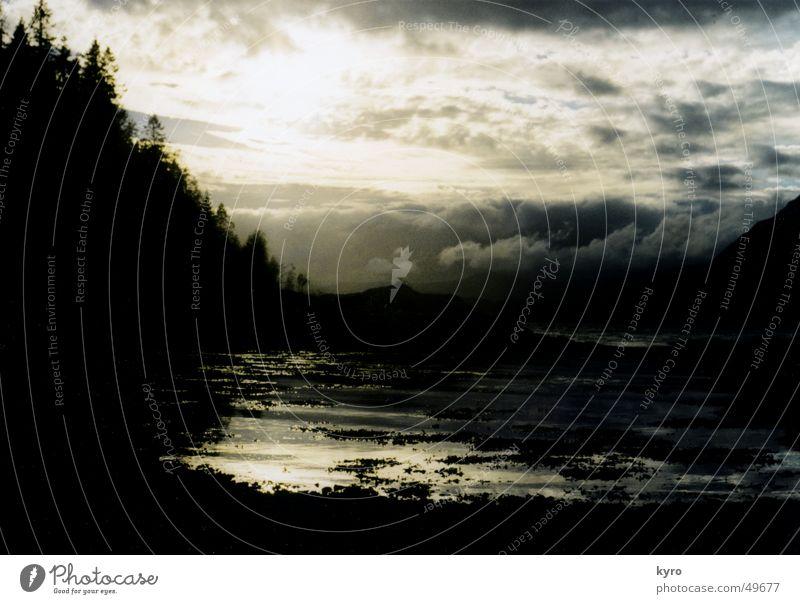 fjord im dunkeln Wasser Himmel Baum Sonne Meer Ferien & Urlaub & Reisen Wolken Wald dunkel kalt Stein Wellen Küste Wind Fisch Angeln