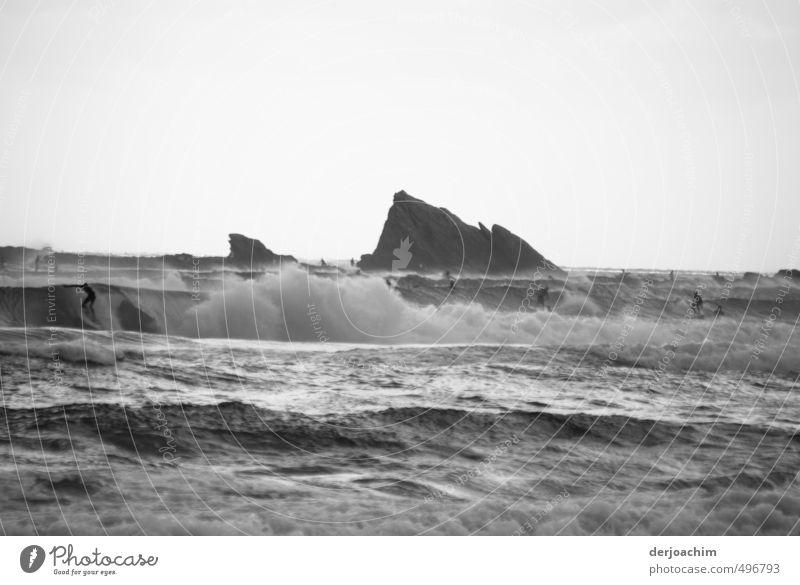 Wave Surfer Mensch Frau Jugendliche Mann Wasser Meer Junge Frau Freude 18-30 Jahre Junger Mann Erwachsene Schwimmen & Baden Felsen Menschengruppe Freizeit & Hobby Wellen