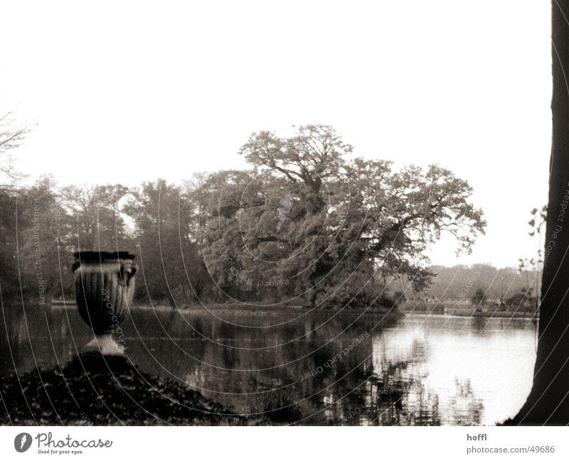 Wörlitzer Park ruhig Herbst See