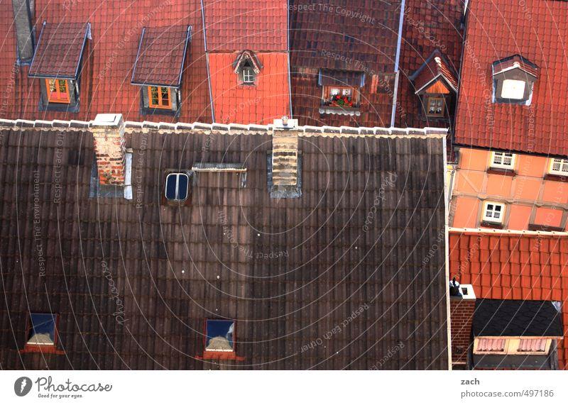 Dachdeckers Paradies Quedlinburg Stadt Altstadt Menschenleer Haus Traumhaus Ruine Bauwerk Gebäude Architektur Fachwerkhaus Fachwerkfassade Mauer Wand Fassade