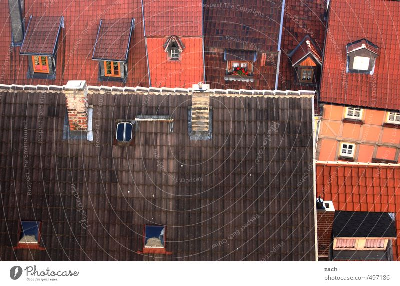 Dachdeckers Paradies Stadt rot Haus Fenster Wand Mauer Architektur Gebäude Fassade Häusliches Leben Neigung Bauwerk Ruine Schornstein Altstadt