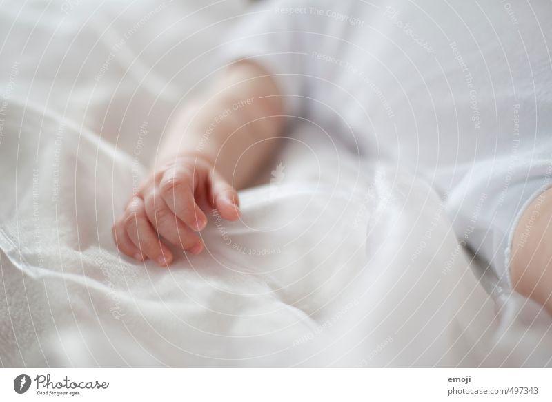 zart Mensch weiß Hand klein Baby weich zart Kleinkind 0-12 Monate