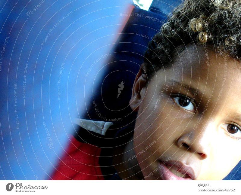 gone on a journey - auf die Reise gegangen Mensch Kind blau Gesicht Auge Denken PKW Kindheit sitzen fahren Locken Fragen unterwegs Hautfarbe Kindersitz