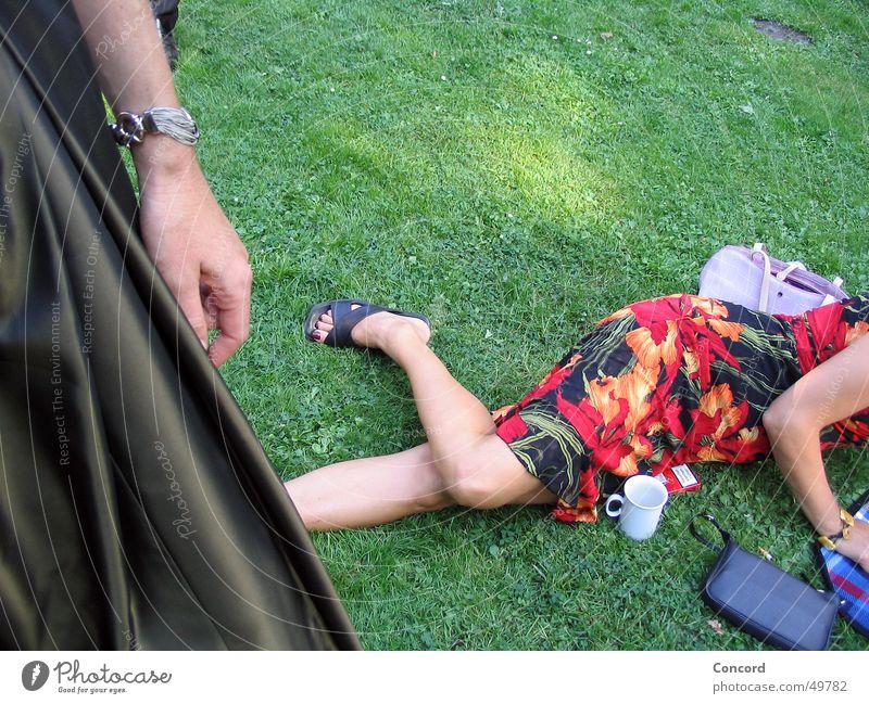 Garden Party Frau Wiese Garten Feste & Feiern Arme liegen Kleid Anschnitt festlich