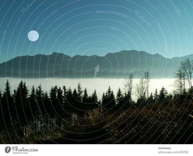 ...über den Wolken Himmel Wolken Wald Berge u. Gebirge Nebel Mond Österreich Vollmond