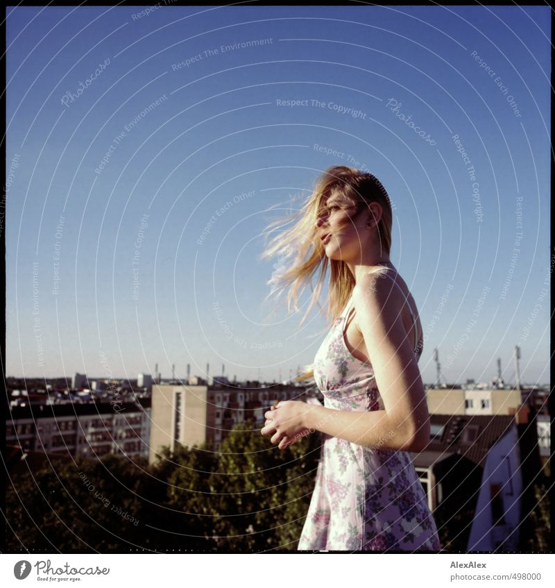 hoch hinaus Kind Jugendliche schön Baum Junge Frau Haare & Frisuren oben Kopf blond elegant Wind Hochhaus authentisch stehen Schönes Wetter frisch