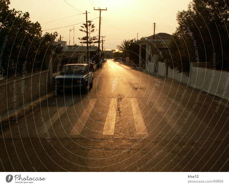 Straße des Glücks ;) Baum Sonne Sommer Traurigkeit PKW Romantik Zebrastreifen