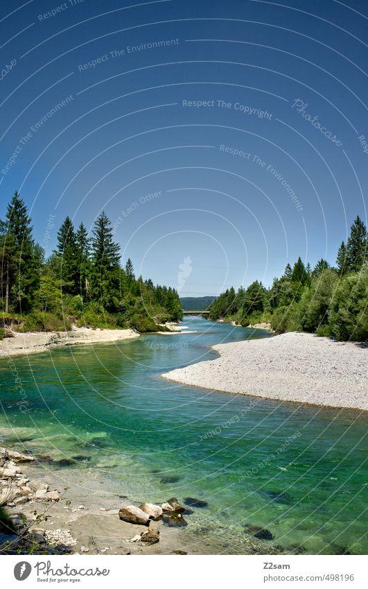 Isar Umwelt Natur Landschaft Wasser Wolkenloser Himmel Sommer Schönes Wetter Baum Sträucher Flussufer ästhetisch Ferne Unendlichkeit kalt nachhaltig natürlich