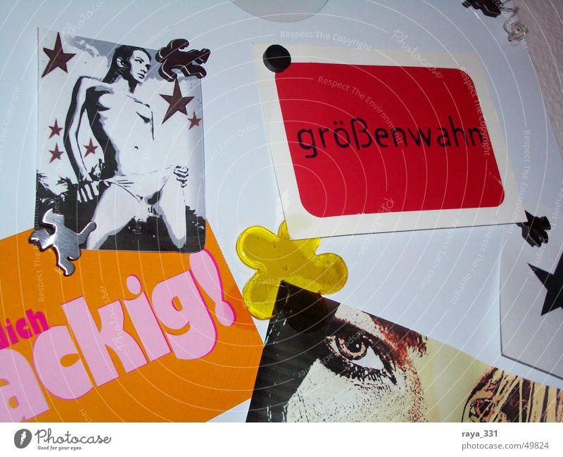 Größenwahn_1 Frau weiß rot Blume schwarz Auge gelb orange rosa Stern (Symbol) Tafel Schwarzes Brett magnetisch Größenwahn