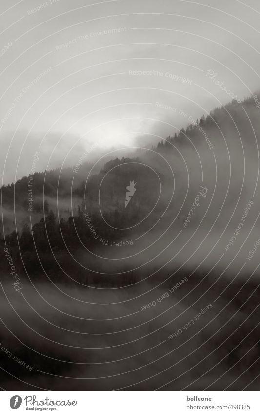 Nebulöös II Berge u. Gebirge wandern Umwelt Natur Landschaft Pflanze Luft Himmel Wolken Sonne Sonnenlicht Herbst Wetter Nebel Alpen Erholung dunkel groß