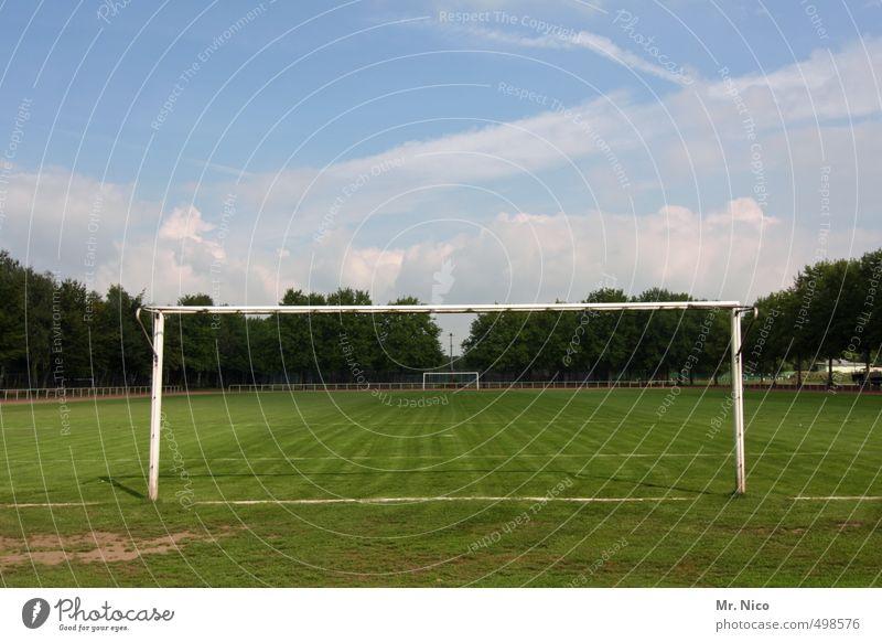 rasenspocht Freizeit & Hobby Sport Ballsport Torwart Fußball Sportstätten Fußballplatz Himmel Schönes Wetter Gras sportlich Fußballtor Sportrasen Sommerpause