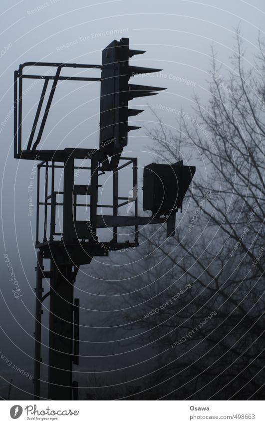 Signal Baum schwarz kalt Herbst grau Nebel Verkehr Technik & Technologie Ast Eisenbahn Sicherheit Stahl Konstruktion Strommast Dunst kahl