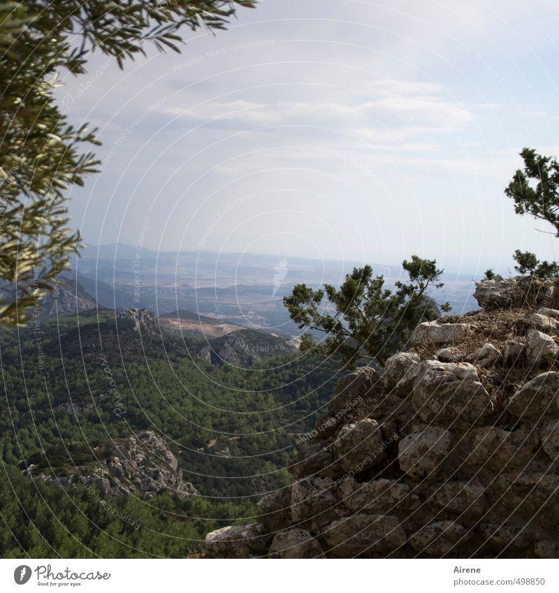 in die Ferne Himmel Natur Ferien & Urlaub & Reisen blau grün Landschaft Berge u. Gebirge Wand Mauer oben Stein Felsen Horizont Ausflug Aussicht