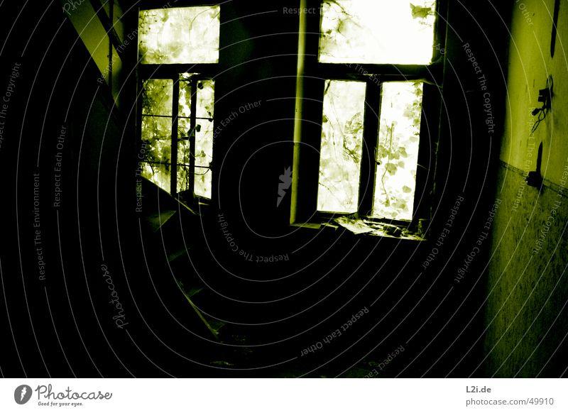Green Room III grün schwarz weiß Licht Fenster dunkel gruselig Wand Haus Raum Blatt Dose Zeitung Zerstörung alt Kontrast Einsamkeit Treppe lichschalter Natur