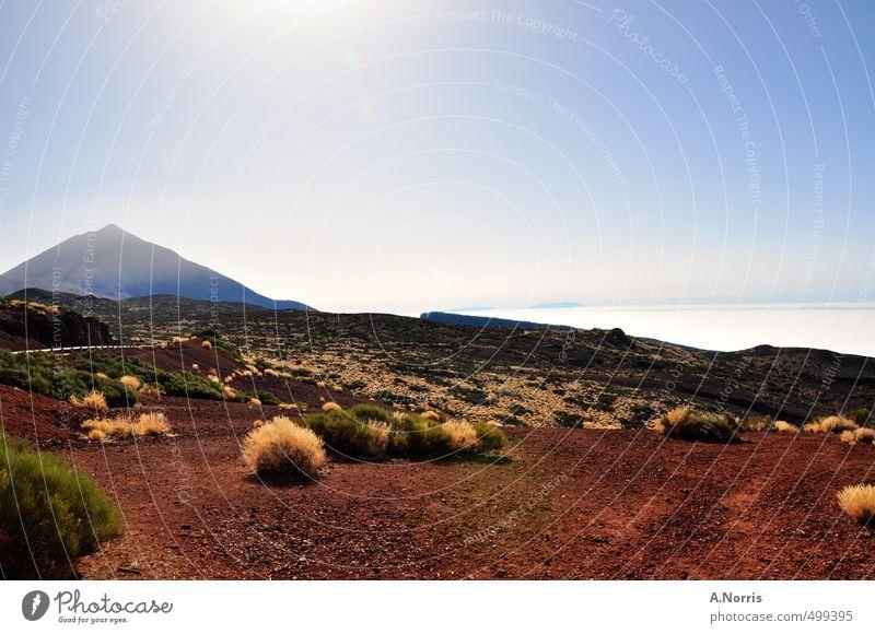 El Teide Natur Ferien & Urlaub & Reisen blau Sommer Landschaft Umwelt Wärme Sand Luft braun wild Erde wandern Sträucher hoch Schönes Wetter
