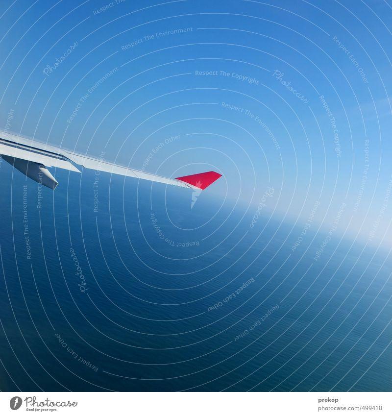 Bündig Himmel Wolkenloser Himmel Schönes Wetter Luftverkehr Flugzeug Passagierflugzeug ästhetisch Tragfläche Horizont Ferne Fernweh Ferien & Urlaub & Reisen