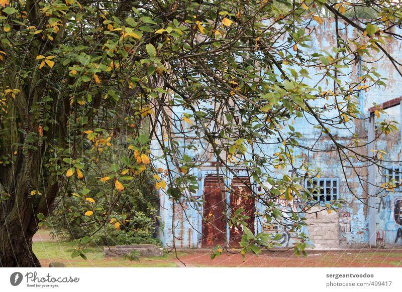 Summer is gone... blau grün Farbe Baum Blatt gelb Graffiti Herbst Architektur Park Fassade Tourismus kaputt Vergänglichkeit Wandel & Veränderung Industrie