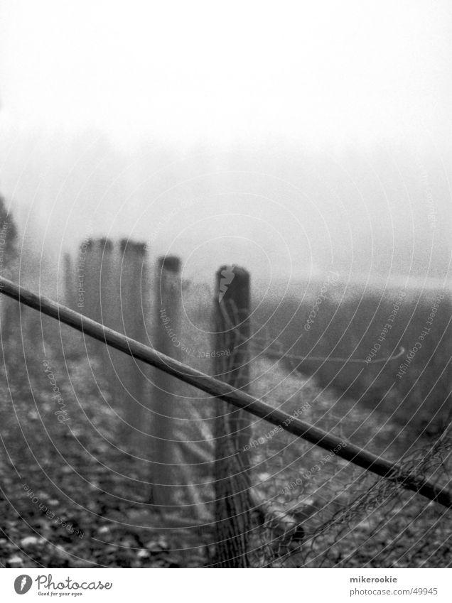 Zaun im Nebel Schwarzweißfoto Außenaufnahme Textfreiraum oben Starke Tiefenschärfe Natur Schranke alt gruselig kalt schwarz Einsamkeit brechen Durchbruch Draht