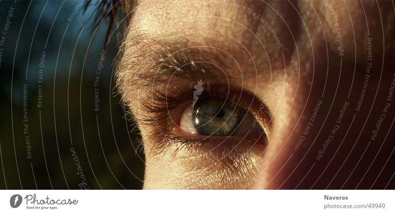 <----=<< das Ziel vor Augen <----=<< Mensch Jugendliche schön Ferne Auge Erwachsene maskulin Hoffnung Zukunft Ziel nah Wunsch Neugier beobachten Fernweh Wimpern