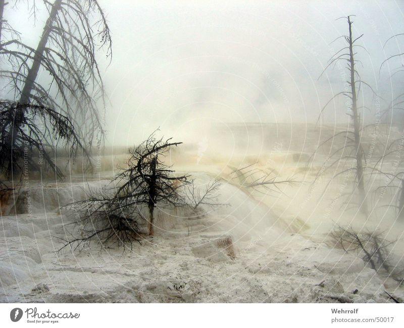 Smoke Wasser Himmel Baum Stimmung Nebel nass Rauch Kalk Kalkstein