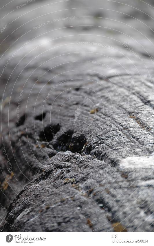Felsen mit Loch Natur kalt grau Stein Linie hart wellig