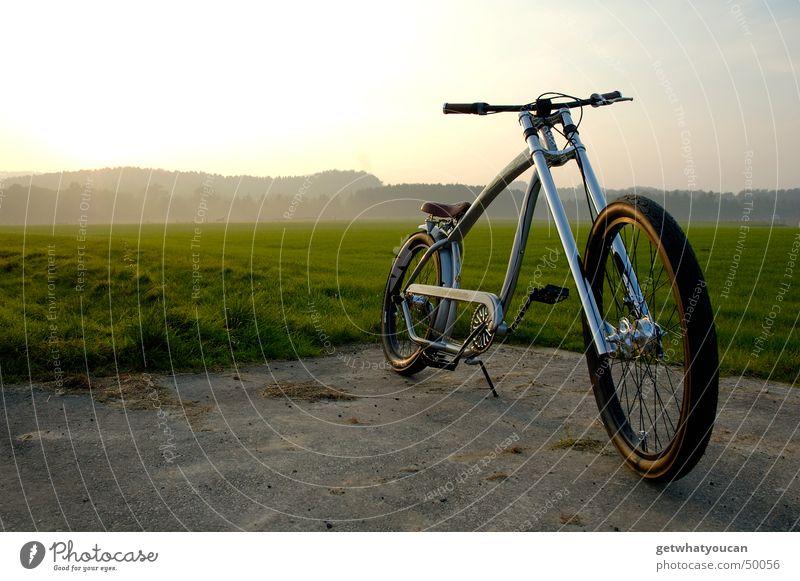 Ausgesetzt Fahrrad Cruiser Amerika Wiese Wald Licht Physik Gabel Am Rand Coolness Abend Landschaft Himmel Sonne Wärme Zufriedenheit Perspektive Einsamkeit