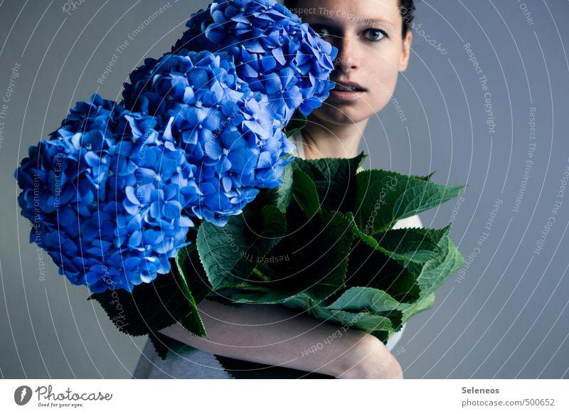 Lieblingswuselmonsterblumen Mensch feminin Frau Erwachsene Gesicht 1 Natur Pflanze Blume Blatt Blüte Hortensie Hortensienblüte Hortensienblätter Blühend tragen