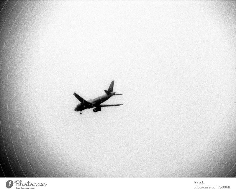 Flugzeug körnig Grauwert Finkenwerder Beginn Holga Luftverkehr Schwarzweißfoto Dinge Himmel Reaktionen u. Effekte Ferien & Urlaub & Reisen