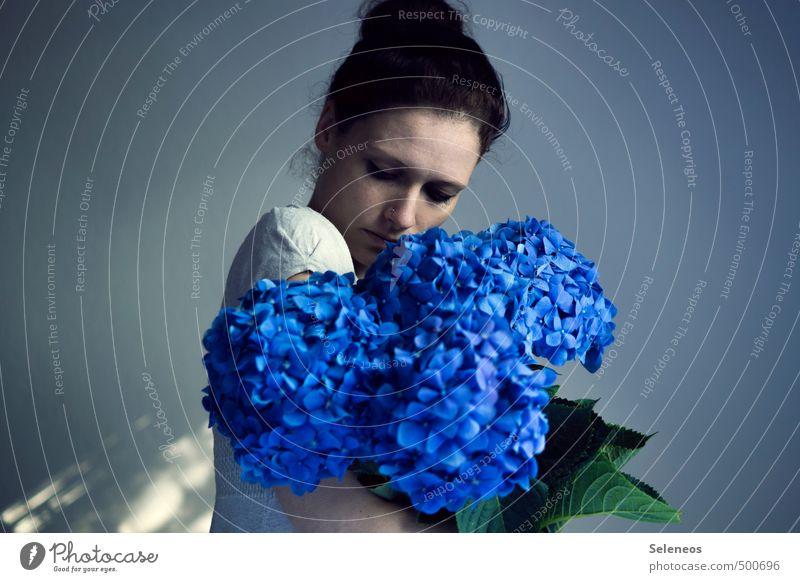 Farbbomben Sommer Mensch feminin Frau Erwachsene Kopf 1 18-30 Jahre Jugendliche Pflanze Blume Blüte Hortensie Hortensienblüte Hortensienblätter Blühend verblüht