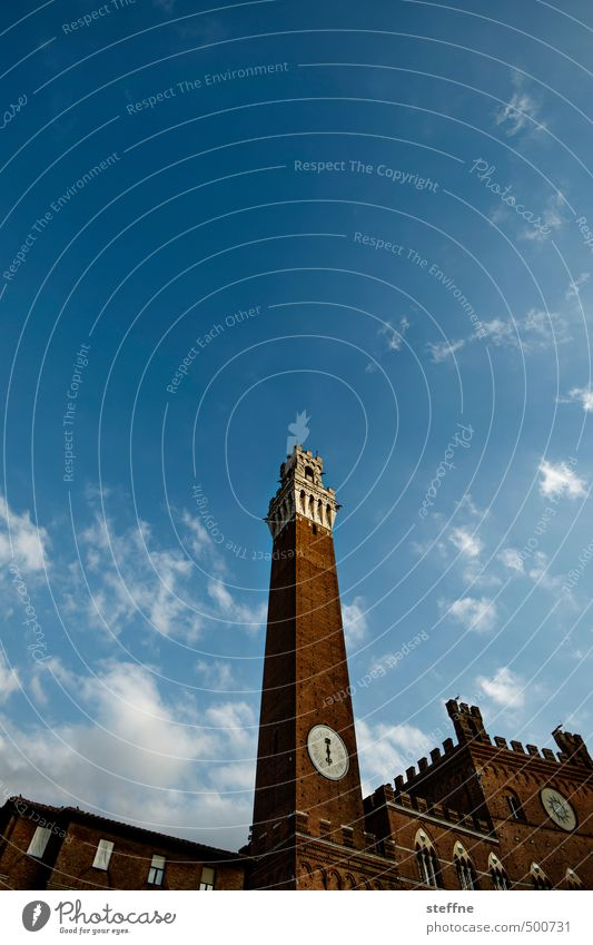 1234, Iss! Himmel Schönes Wetter Siena Toskana Italien Kleinstadt Altstadt Turm Mauer Wand Sehenswürdigkeit Wahrzeichen hoch torre del mangia Farbfoto