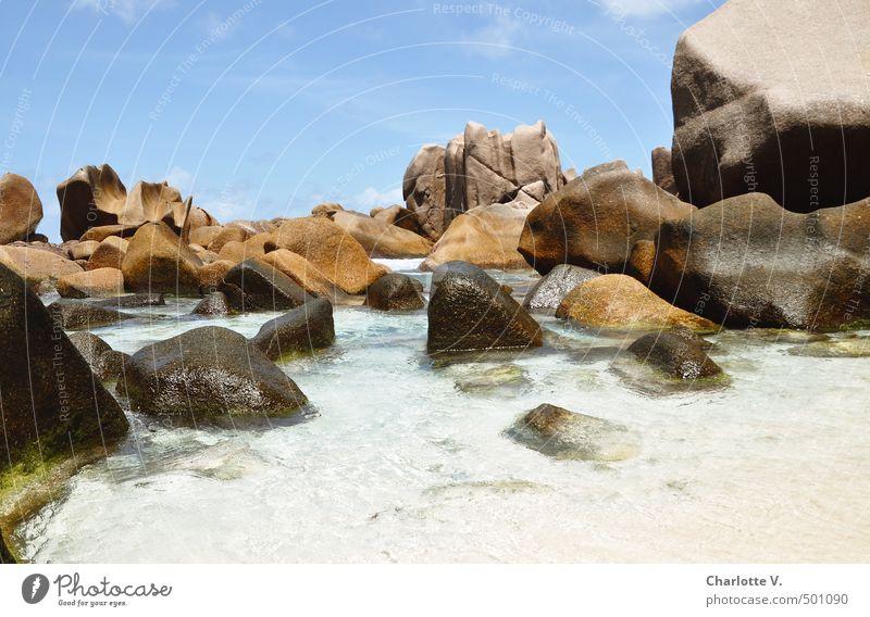 Klettergarten Natur Urelemente Sommer Schönes Wetter Bucht Meer Indischer Ozean Stein Wasser fest Flüssigkeit gigantisch nass natürlich schön blau braun türkis