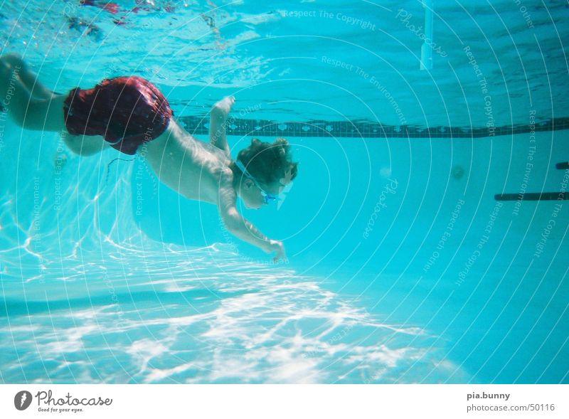 David underwater Wasser Sommer Junge Schwimmbad tauchen Schwimmen & Baden Florida