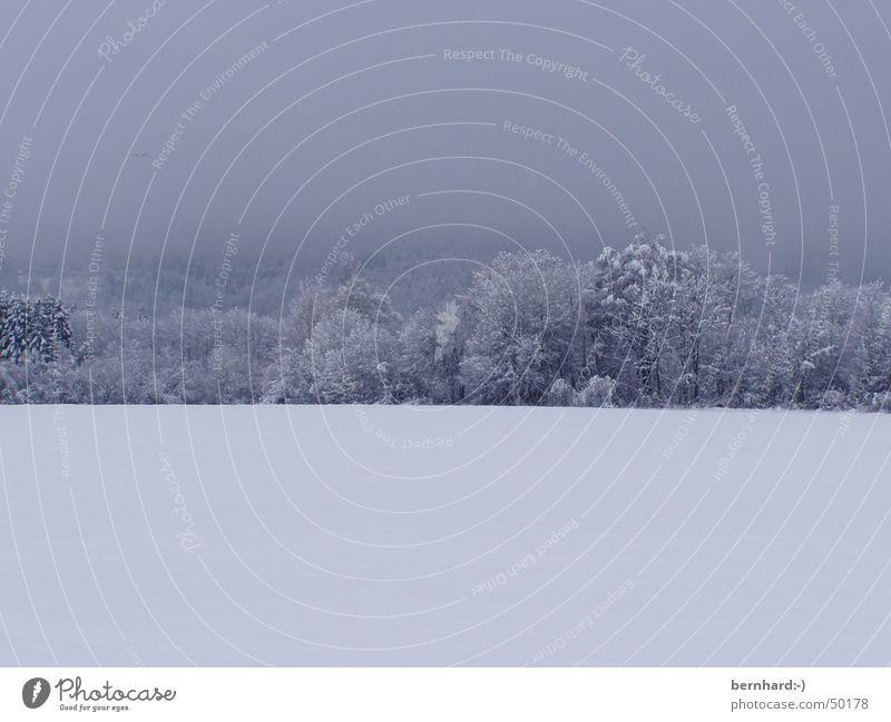 es hat geschneit! Winter kalt Eis Landschaft Schneelandschaft Schnellzug