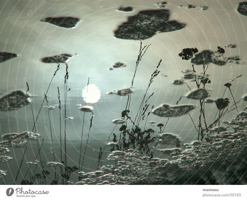Winterpfütze Wasser Himmel Sonne Wolken Straße Schnee Gras Eis Asphalt Pfütze