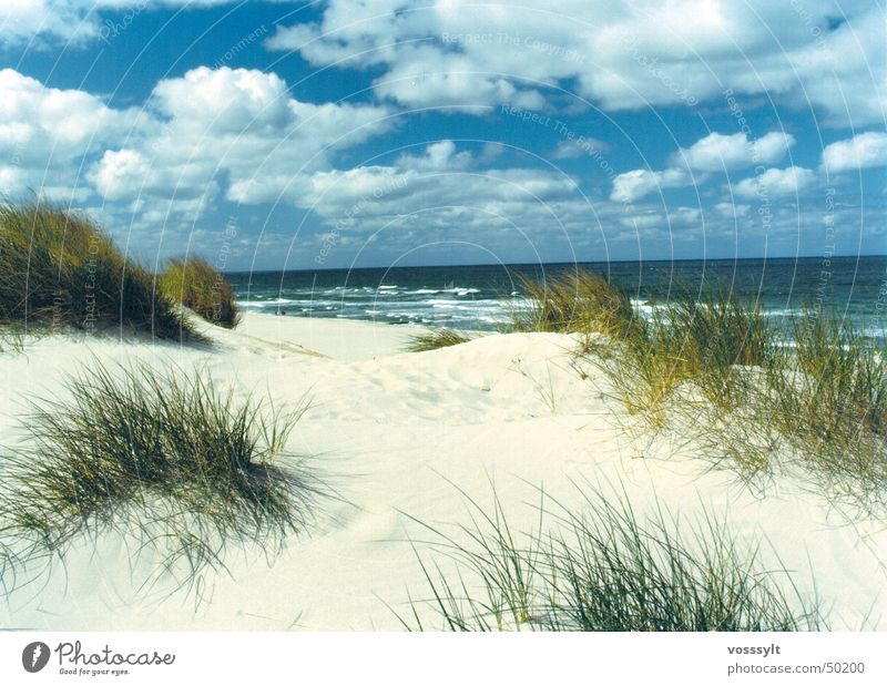 Lister Dünen Strand Himmel Stranddüne schönster platz auf sylt Scan