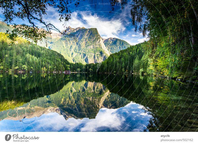 Piburger See Himmel Natur Ferien & Urlaub & Reisen Wasser Pflanze Sommer Baum Erholung Landschaft ruhig Wolken Tier Umwelt Berge u. Gebirge Herbst