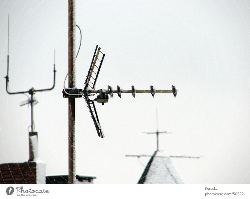 WinterAntennen Dach grau kalt Fernsehen Blick Wellen Fernseher Schnee Himmel Begrüßung schonstein